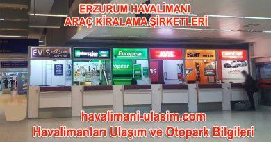 Erzurum Havalimanı Araç Kiralama Şirketleri